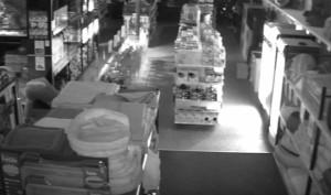 Κλέφτης μπήκε σε pet shop και δεν έκλεψε χρήματα! Τι πήρε; (video)