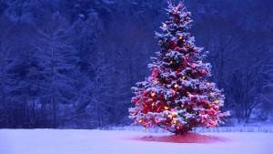 Τα Χριστουγεννιάτικα fails του 2016