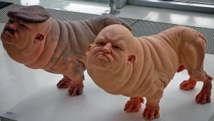 Ξεφεύγει η κατάσταση: Δημιούργησαν υβρίδιο ανθρώπων - χοίρων... (Photo+video)