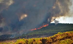 Στις φλόγες ξανά η Ζάκυνθος: Πύρινη κόλαση σε Αναφωνήτρια, Βολίμες και Σκοπό