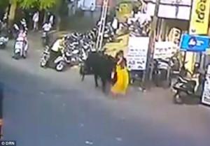 Ταύρος πέταξε γυναίκα στον αέρα και την τραυμάτισε σοβαρά (video)