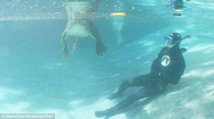 Δύτης έρχεται σε επαφή με αλιγάτορα και ξεφεύγει (video)
