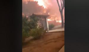 Το βίντεο της κολάσεως από τη φωτιά στο Μάτι! Σώθηκε από θαύμα μαζί με τη γάτα του!