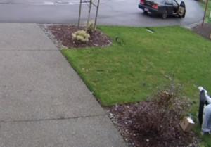 ΘΕΙΑ ΔΙΚΗ: Έσπασε τον αστράγαλό της, ενώ έκλεβε ένα δέμα (video)