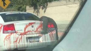 Φρίκη: Κυκλοφορούσε ανενόχλητος στους δρόμους του Λος Άντζελες με αυτό το αυτοκίνητο (video)