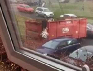 Σκαρφάλωσε σε κάδο για να πετάξει τα σκουπίδια. Τελικά, η... σακούλα είχε άλλη άποψη (Video)