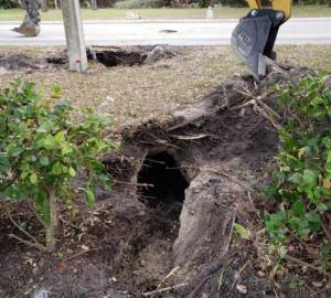 Απίστευτο: Η λακκούβα φανέρωσε τούνελ για διαρρήκτες που οδηγούσε σε τράπεζα (photos)