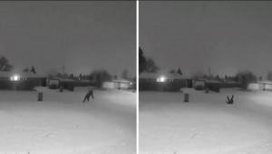 Βγήκε... χαλαρός να περπατήσει στο χιόνι! Δείτε τι κατέγραψε η κάμερα ασφαλείας (video)