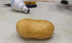Μπορεί μια βρασμένη πατάτα να... ανάψει μια λάμπα; Το πείραμα που διχάζει (video)