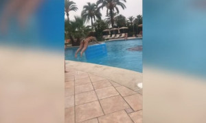 Τρομερό fail! Πήγε να πηδήξει στο στρώμα αλλά την… τρόλαρε ο αέρας (video)