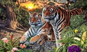 Σε αυτή τη φωτογραφία είναι κρυμμένες 16 τίγρεις - Μπορείς να τις εντοπίσεις;
