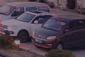 Άφησε τον σκύλο του στο αμάξι - Αυτό που έπαθε μετά δεν θα το ξεχάσει ποτέ! (video)