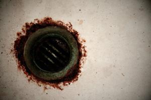 Εχετε μυγάκια και κατσαριδάκια στο μπάνιο; Καθαρίστε αμέσως το σιφόνι με αυτό το κόλπο (video)