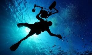 Βούτηξαν σε βαθιά νερά - «Πάγωσαν» μ' αυτό που είδαν να τους πλησιάζει (video)
