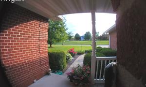 Κοίταξαν την κάμερα της πόρτας τους - Δεν πίστευαν αυτό που αντίκρισαν (video)