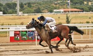 Markopoulo Park: Τέσσερα ΣΚΟΡ και δέκα ιπποδρομίες στη συγκέντρωση της Δευτέρας