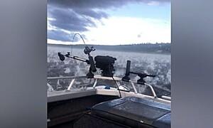 Ψάρευαν αμέριμνοι απ' το σκάφος τους, όταν ξαφνικά άρχισαν να φωνάζουν... (video)