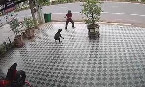 Μεθυσμένος δέχθηκε επίθεση από σκυλιά - Έτσι τα σταμάτησε (video)