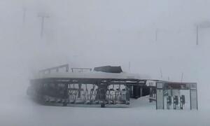 Καιρός - Live: Πυκνή χιονόπτωση στον Παρνασσό! Πολλά εκατοστά νέο χιόνι (Video)