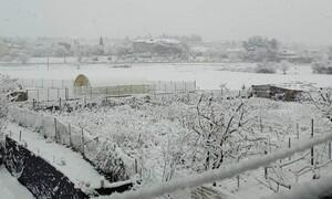 Καιρός: Το Live του Σάκη Αρναούτογλου απ' τη χιονισμένη Θεσσαλονίκη (vid)