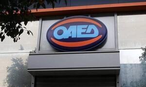 OAEΔapp: Τι μπορείτε να κάνετε στη νέα εφαρμογή του ΟΑΕΔ