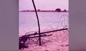 Βίντεο ντοκουμέντο από τις ορδές των νεαρών στο beach party - «φωτιά» της Γλυφάδας