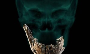 Ισραήλ: Ανακαλύφθηκε νέος τύπος αρχαίου ανθρώπου (photos+videos)